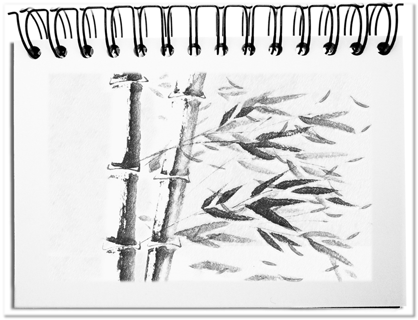 Der Wind - die ideale Metapher für Einflussfaktoren