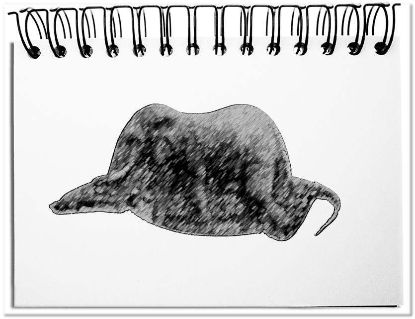 Saint-Exupérys Hut - die ideale Metapher für Tatsachen