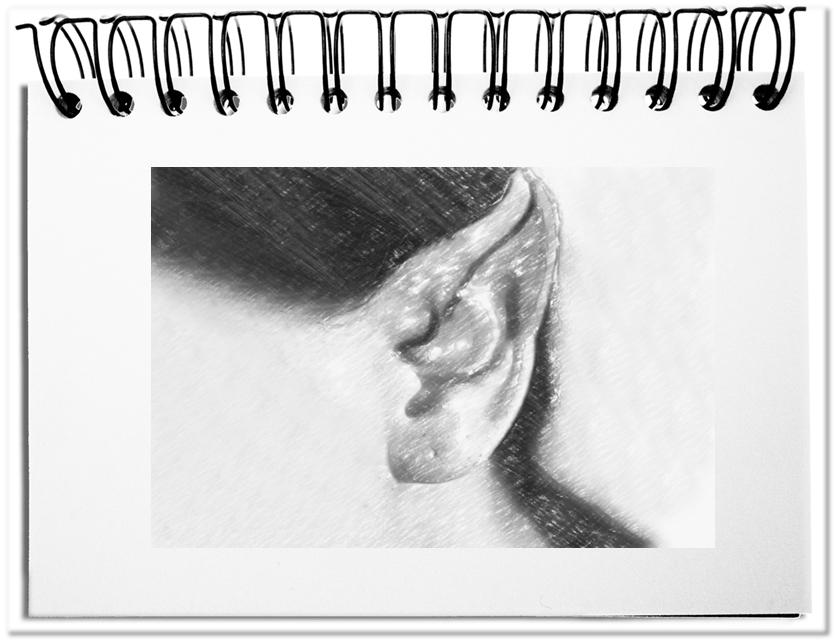 Fünf weitere Ohrenspitzer